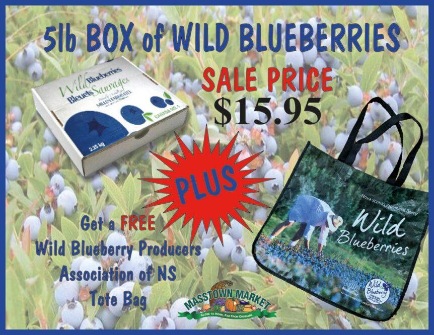 frozen wild blueberries masstown market